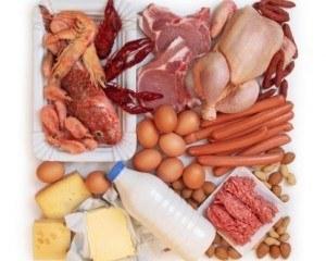 Всичко за протеините